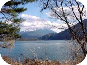 キャンプ場からの富士山
