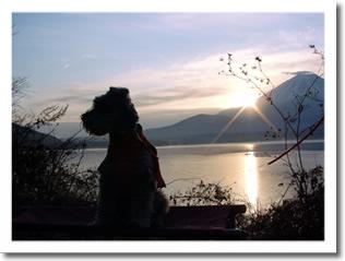 富士山から初日の出