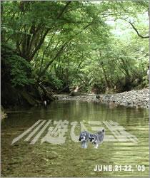川遊び三昧キャンプ