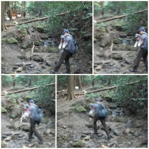 宝篋山 山口コース3 川を渡る