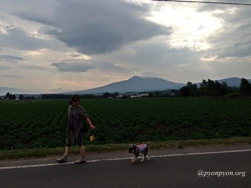 ただ今、北海道滞在中
